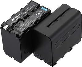 Globalsaving Battery for Sony handycam Camcorder HDR-XR550 DCR-HC36E DCR-HC37 DCR-HC37E li-ion Battery