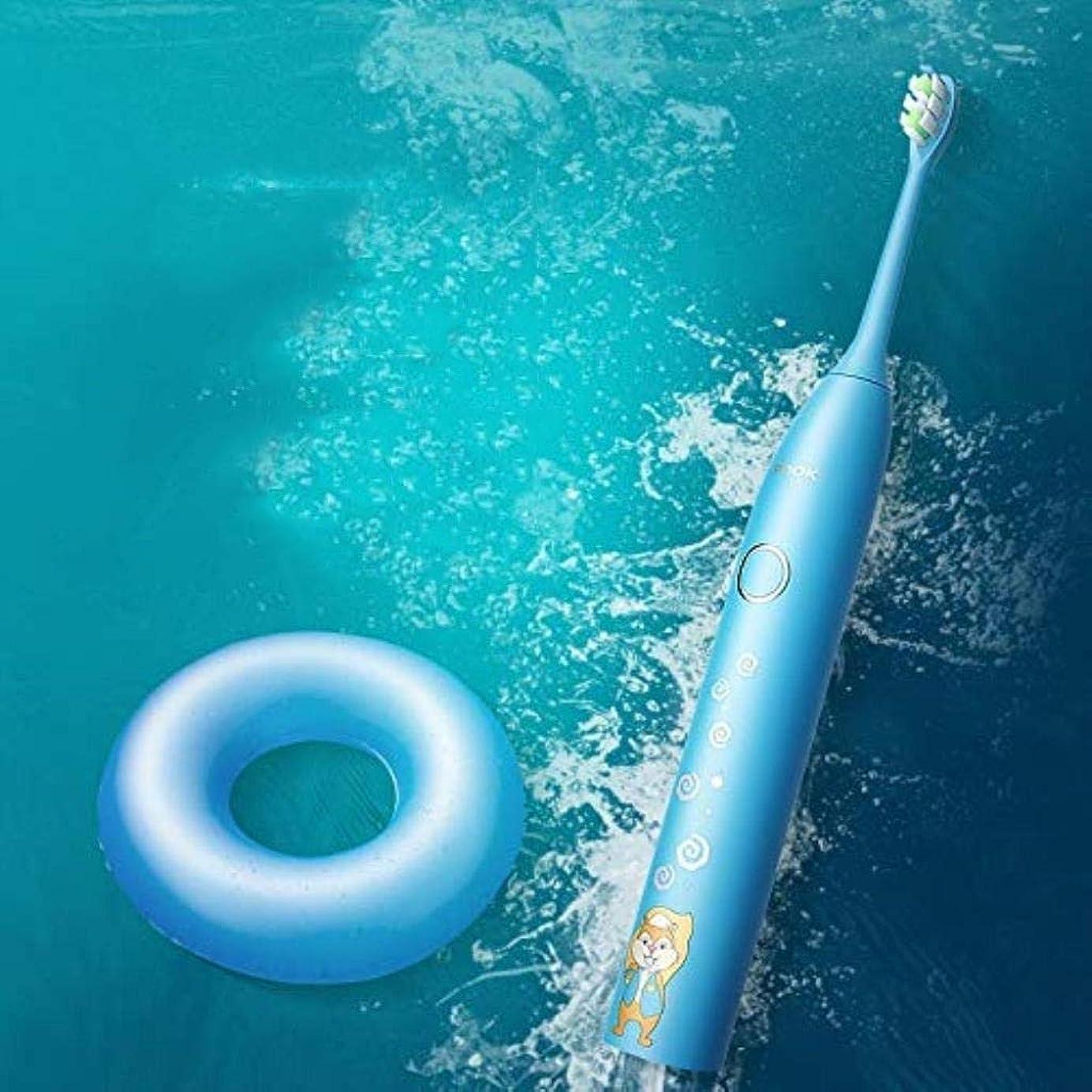 予測不健全応援する電動歯ブラシ、充電式歯ブラシ、スタンド付き大人用電動歯ブラシ、交換用ヘッド1本IP67防水、急速充電 (Color : A)