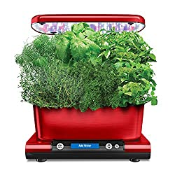 AeroGarden Marijuana Growing | Easiest Way to Grow Weed? | Beginners
