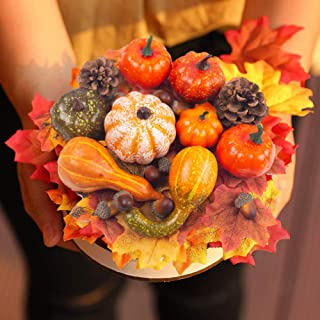DOMESTAR Halloween Mini Artificial Pumpkins and Gourds Maple Leaves Pine Cones Acorns..