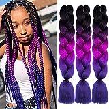 ColorfulPanda 3 Pièces Ombre Tresse Jumbo Cheveux Synthétiques 24 Pouce 100g Kanekalon Cheveux Tressage Extensions Pour Crochet Twist Tressage Cheveux (3PCS, Noir/Violet Foncé/Violet Clair)