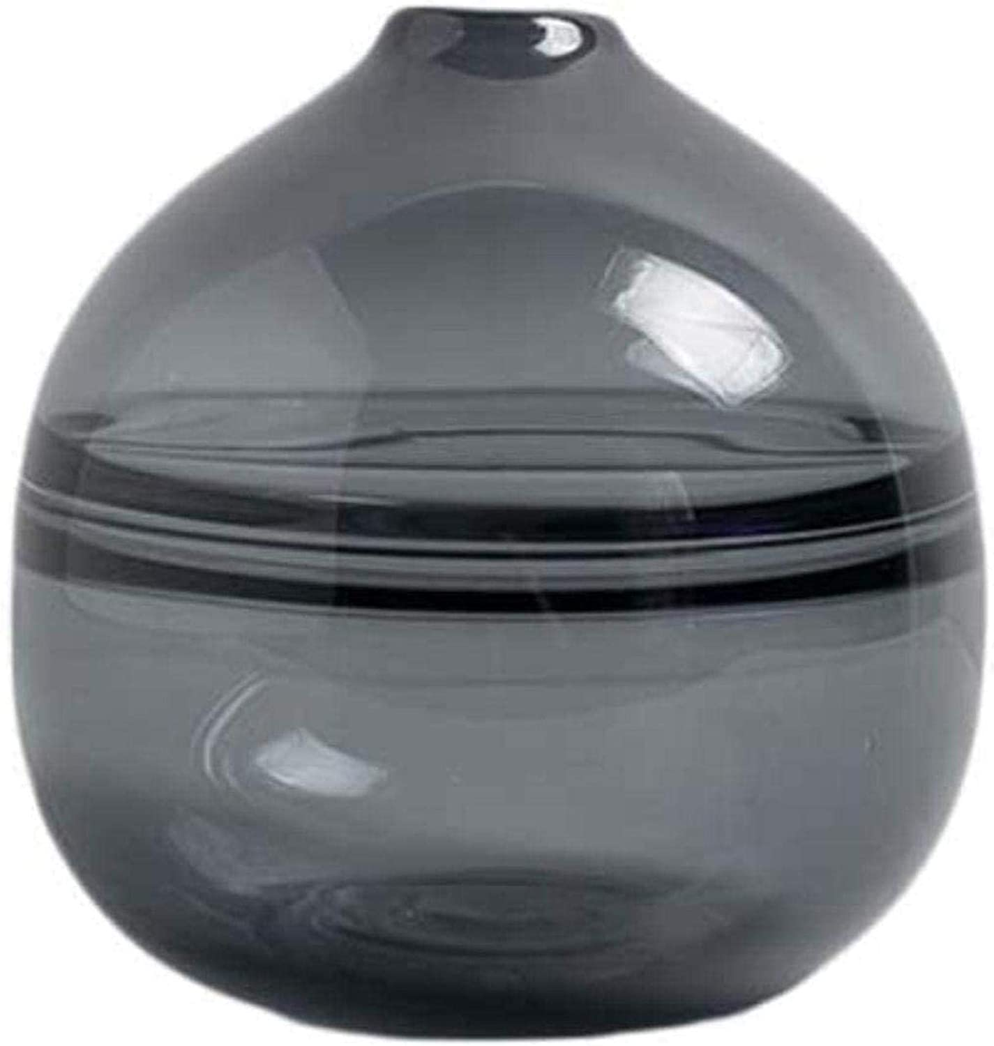 HZYDD VASE Vases Glass Handmade Hydroponic High quality Tr Simple Plant Ranking TOP15 Craft