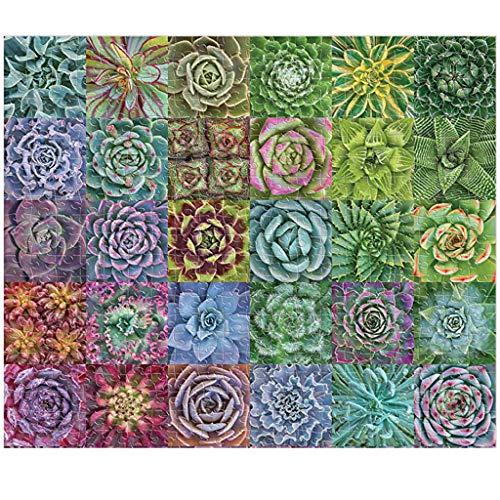 HSKB Jigsaw Puzzle DIY Holzpuzzle 1000 Teile Sukkulente Pflanzen Jigsaws Paper Spiele Montage Bausteine Lernspiele Erforsche Deine Kreativität und Deine Gabe/ Lesen/ Puzzeln /Rätsel Lösen (75 x 50cm)