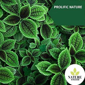 Prolific Nature