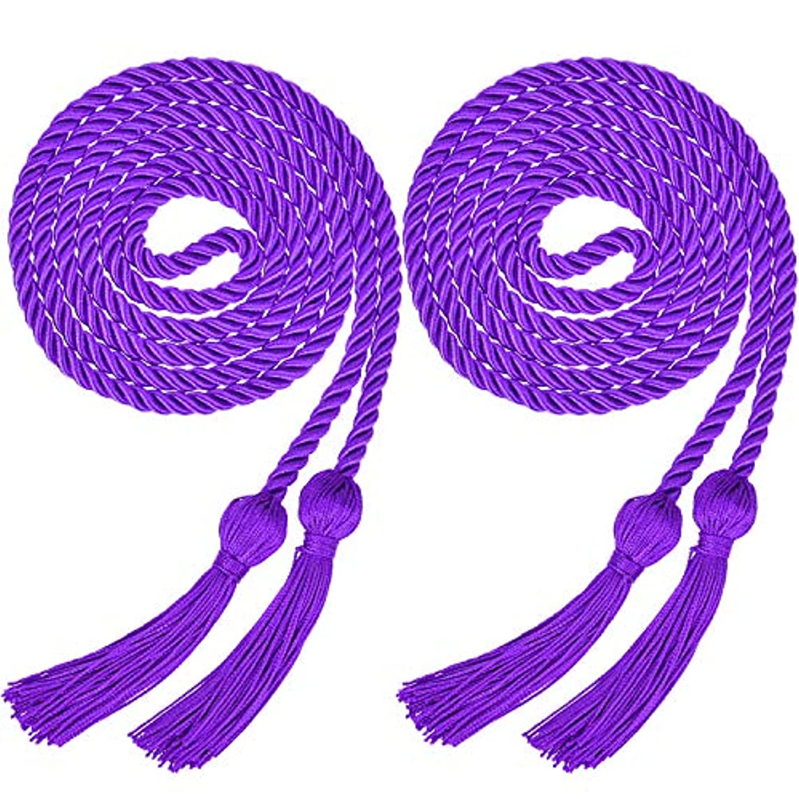 Yaomiao 2 Pieces Graduation Cords Polyester Yarn Honor Cord with Tassel for Graduation Students (Purple)