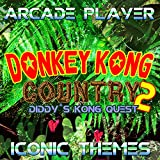 Bonus Game Intro (From 'Donkey Kong Country 2')