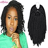 Befunny 8inch 8Packs Afro Twist Crochet Hair Short Bob Spring Twist Hair Small Havana Twist Crochet Hair Prelooped Synthetic Marley Curly Braid Hair Extensions For Women 15Strands/Pack (8', 1B#)