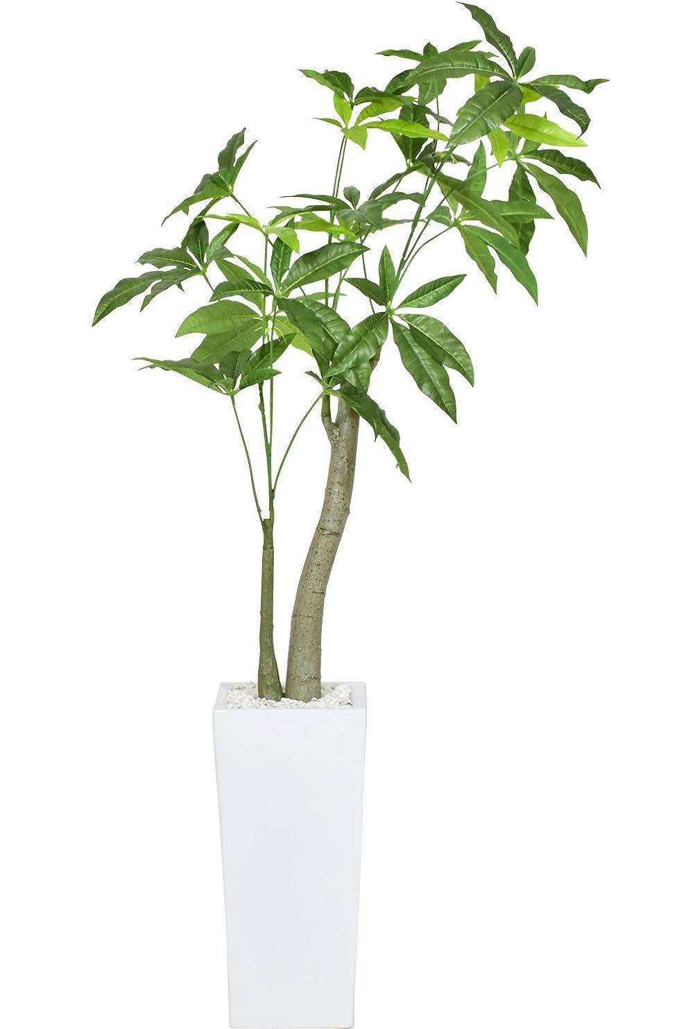 ジャンクション傘打ち上げるDORIS 観葉植物 人工観葉植物 高さ約107cm 本物に近い質感 水やり不要 陶器鉢 パキラ M