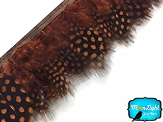 Moonlight Feather | 1 Yard - Brown Guinea Hen Plumage Feather Trim Wholesale Supplier Costume, Craft, Halloween Feathers