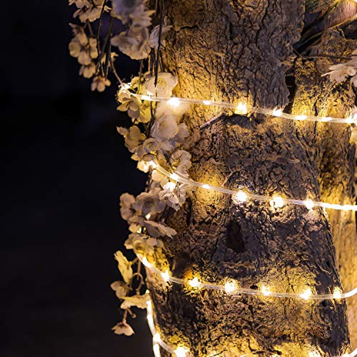 CozyHome 200 LED tubo luminoso esterno con timer e 8 modalità – 12 metri | con spina di alimentazione non alimentata a batteria | Tubo luminoso anche per interni, giardino | 200 LED bianco caldo