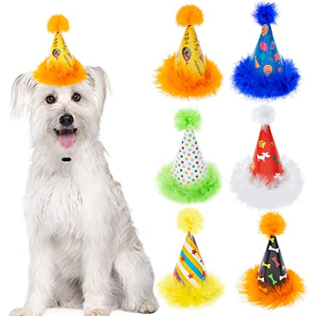 Tiny Hats Dog Birthday Hat First Birthday Hat Dog Party Hat Mini Party Hat Dog Lover Gift Pet Birthday 80s Party Kawaii