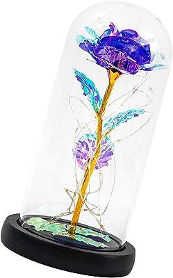SH-RuiDu Rose in cupola di vetro con filo di rame luce incantata rosa luce per decorazione domestica San Valentino