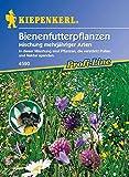 Kiepenkerl Bienenfutter Mischung (Bienenfutterpflanzen) 0-0cm / 1 Packung (Blumenzwiebeln, Sommerblüher (Aussaat im Frühjahr))