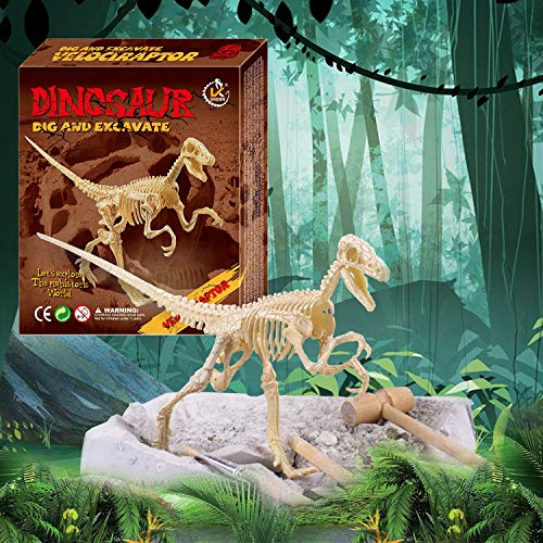 Dinosaur Digging Fossil Dinosaur Excavation Tools Dino for Kids 7-12 Year Old Toy...