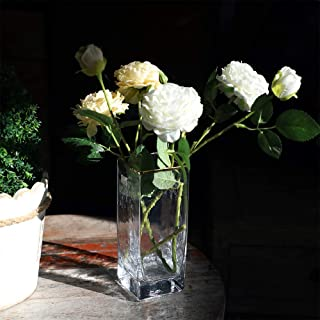 cyl home Vase Clear Hammered Glass Flower Arrangement Vases with Golden Rim Decor Cube Table Centerpieces Modern Rectangle Accent for Dining Living Room Wedding Gift, 7.9`` H x 3.1`` D