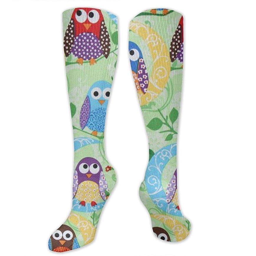 伝染性セミナー東方靴下,ストッキング,野生のジョーカー,実際,秋の本質,冬必須,サマーウェア&RBXAA Hand Painted Colored Owls Socks Women's Winter Cotton Long Tube Socks Cotton Solid & Patterned Dress Socks