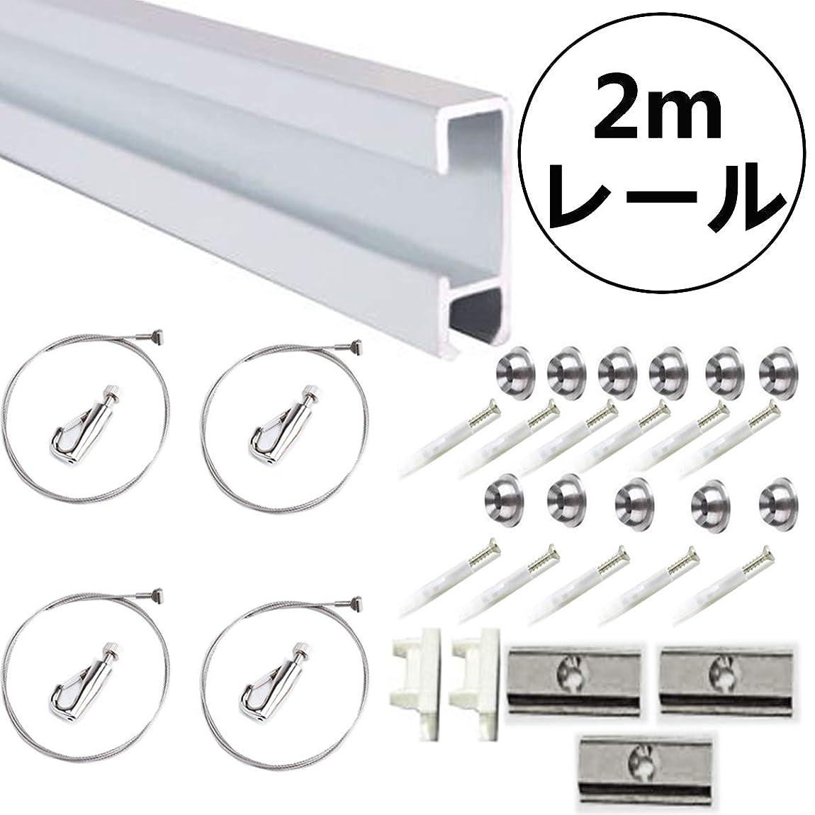 鰐最大限準備ピクチャーレール + ステンレス鋼 セット 壁面用 シルバー (2.0mレール)