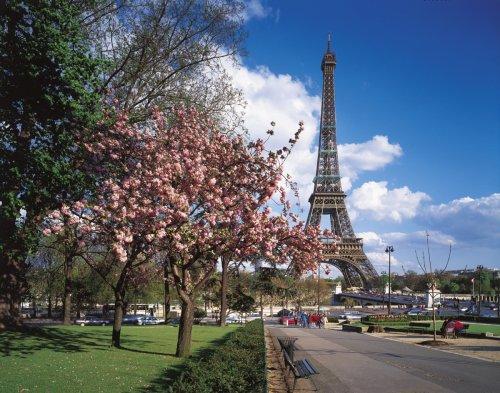 Puzzle 1000 Piezas Flores en Paris, Multicolor (39482.1)