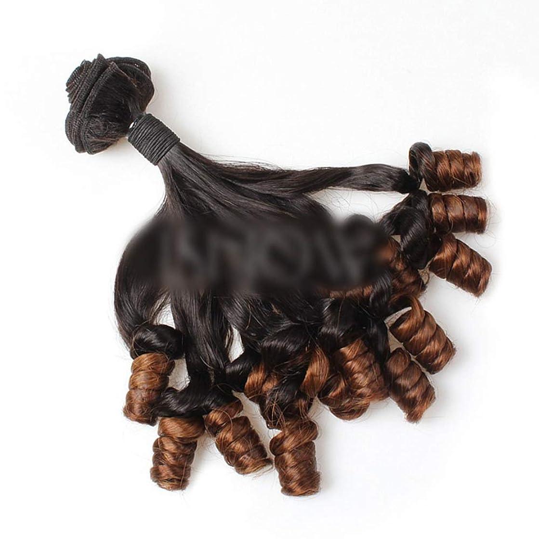 WASAIO ブラジル人毛Unforesightfulカーリースラックは、女性のための閉鎖ボディウェーブバンドルに織り (色 : ブラウン, サイズ : 16 inch)