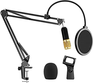 """Microphone Arm Stand, Ranedo Professional Adjustable Suspension Boom Scissor Mic Stand with Pop Filter, 3/8"""" to 5/8"""" Adapter, Upgraded Heavy Duty Clamp for Snowball Ice and Other Mics Recording"""