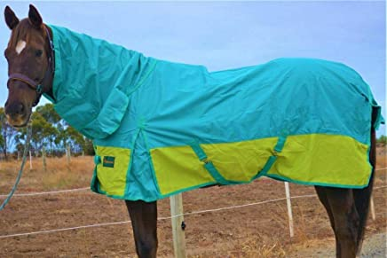 """RUMANI Conquest 1200D with 200G Fill Waterproof Winter Turnout Horse Rug Combo, 4'9"""", Tiffany Blue Top and Parrot Green Bottom"""