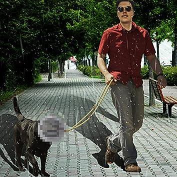 Mikki Kävely