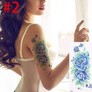 Amazon.es: fhfxhj - Cuerpo / Maquillaje: Belleza