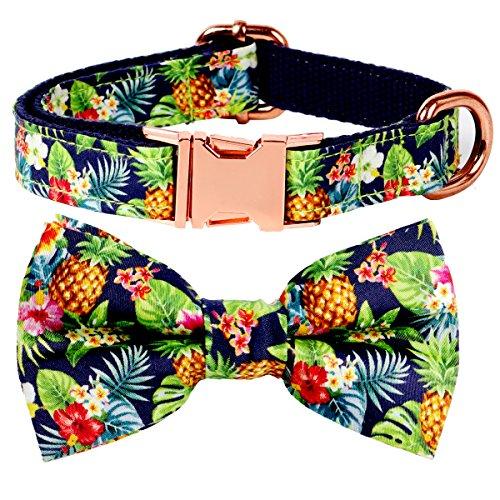 csspet Katzen- und Hundehalsband mit Fliege, abnehmbare Fliege, verstellbares Halsband, M (12''-20''), Ananas