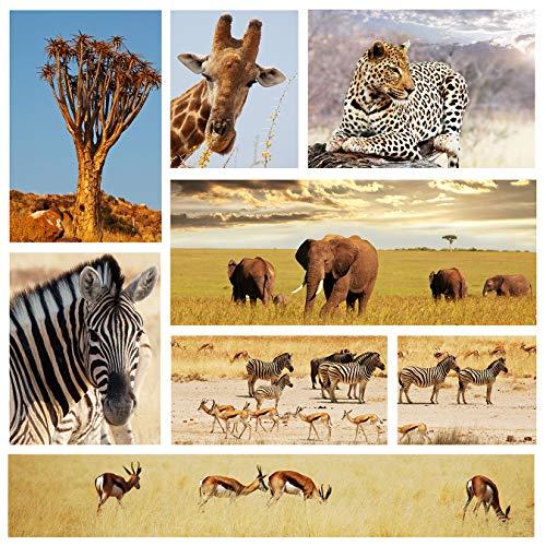 Bilderdepot24 Fototapete selbstklebend Afrika Collage II - 110x100 cm - Wandposter Tapete Motivtapete - Tiere Tierbild