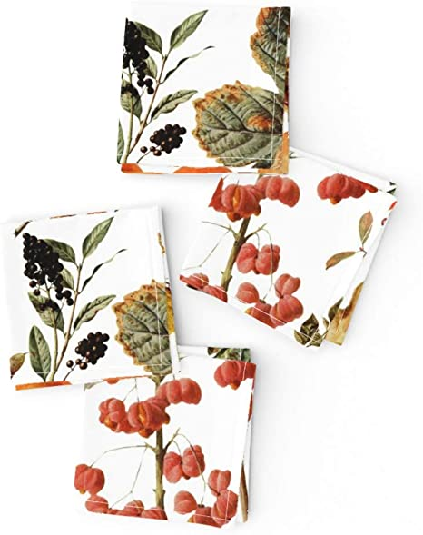 Floral Botanical Harvest Fall Fall Cotton Dinner Napkins by Roostery Set of 2