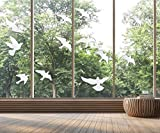 Anti-Collision Window Alert Bird Stickers Silhouettes Glass Door Protection and Save Birds, Transparent (12 Silhouettes)