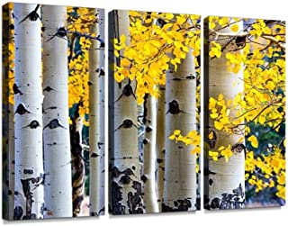 BELISIIS Aspen Tree Autumn Wall Artwork Exclusive Photography Vintage Abstract Paintings Print on Canvas Home Decor Wall Art 3 Panels Framed Ready to Hang