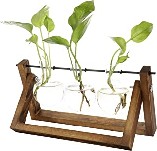 Clear Glass Vase Hanging Plant Terrarium with Retro Solid Wooden Stand for Hydroponics Plants Home Garden