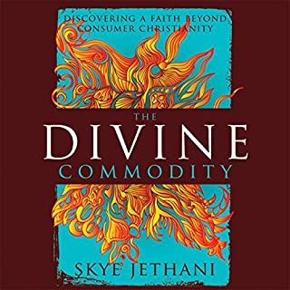 The Divine Commodity audiobook cover art