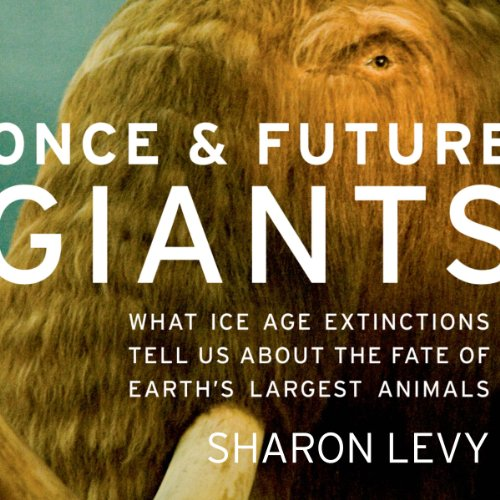 Once and Future Giants audiobook cover art