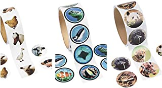 Super Deal! 3 Rolls LIVE ANIMAL PHOTO Stickers/FARM & ZOO Animal and Assorted BIRDS/300 Stickers total/WILD LIFE/NATURE/SCIENCE