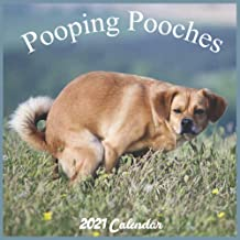 Permalink to Pooping Pooches 2021 Calendar: Offical Pooches Gag Gifts Wall Calendar 2021, Very Funny Gift 18 Months Calendar PDF
