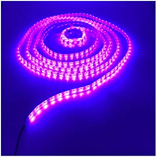 KINGLUX Purple Color Led Strips, IP62 Waterproof Super Bright DC12V 25W SMD3528 300LEDs, IP62 Led Tape Lights Purple Color 5Meter/ 16.4Feet Using for Homes, Kitchen Cabinet Lights and ceilling Lights