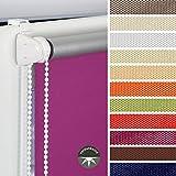 HOMELIA Klemmfix-Rollo Verdunklung mit Thermobeschichtung inkl. Klemmträger 100 x 150 weiß, Verschiedene Größen und Farben