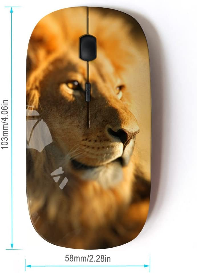 STPlus Big Lion 2.4 GHz Wireless Mouse with Ergonomic Design and Nano Receiver