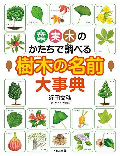 葉・実・木のかたちで調べる樹木の名前大事典