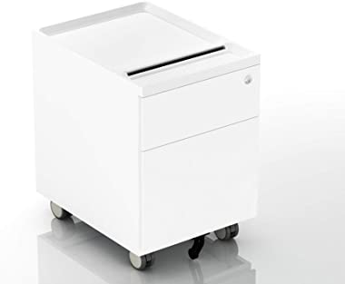 CuHome 2-Drawer Mobile Filing Cabinet with Lock and Casters, Fully Assembled, Vertical File Metal Cabinet for Home Office, Sm