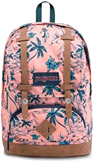 JanSport Unisex-Adult Cortlandt Cortlandt Backpacks