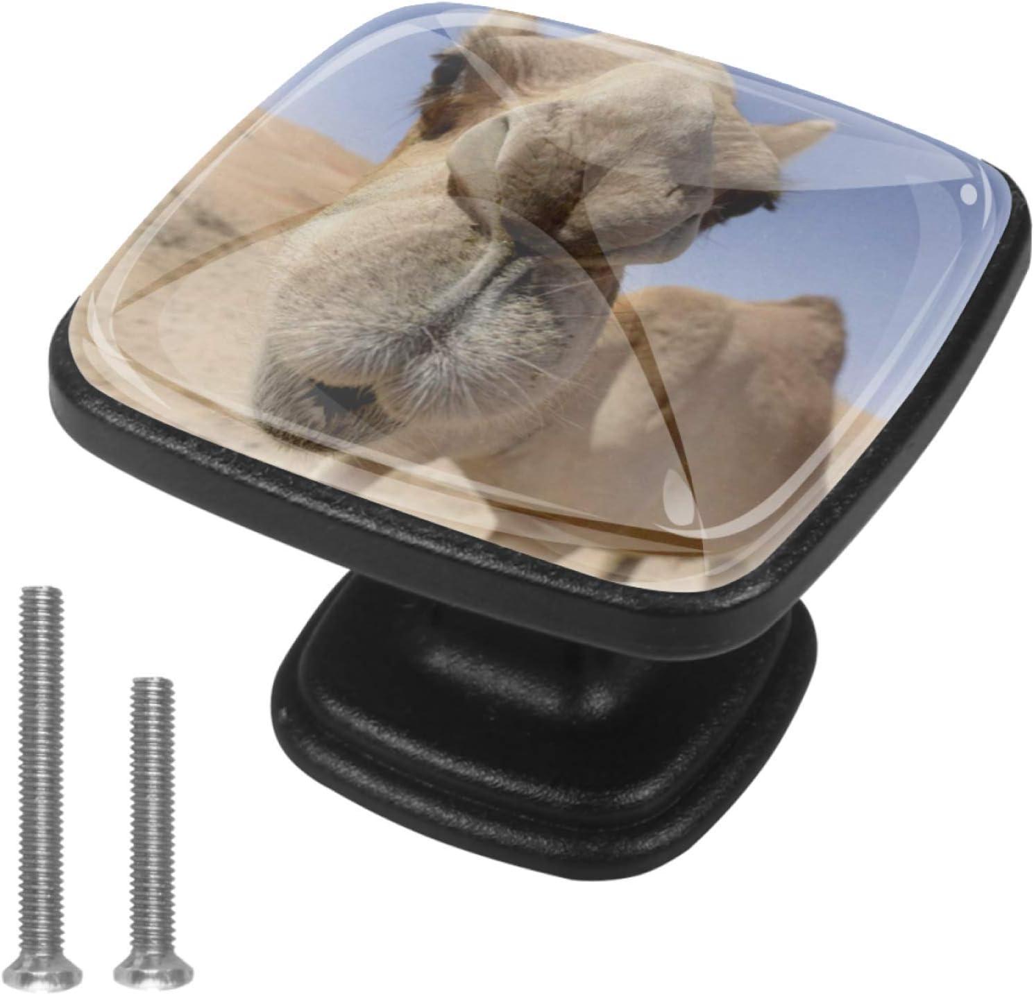 Round Cabinet Hardware Knob 4 Pack Finally resale start 100