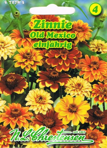 Zinnie Zinien Old Mexico Zinnia haageana Saatgut