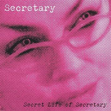 Secret Life of Secretary