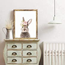 Best rabbit pictures for sale Reviews
