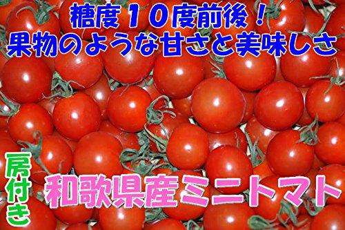 高糖度10度 和歌山産 808 ミニトマト 500g 房付き フルーツトマト