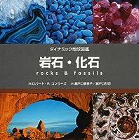 岩石・化石 (ダイナミック地球図鑑)