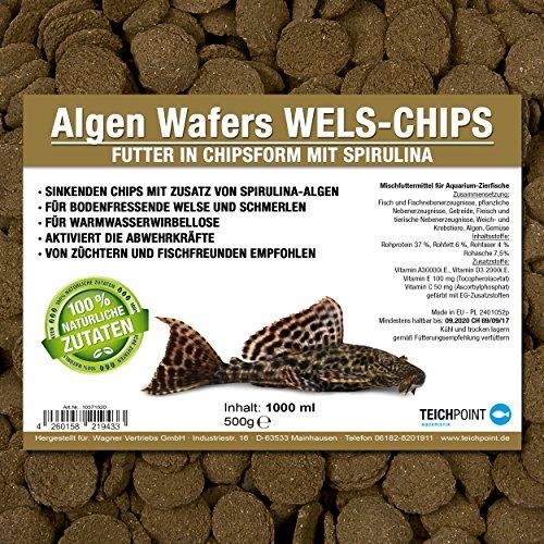 Teichpoint Algen-Wafers Wels-Chips (Hauptfutter für alle pflanzenfressenden Bodenfische und scheuen Zierfische in Waferform) - Welsfutter im 1 Liter Beutel